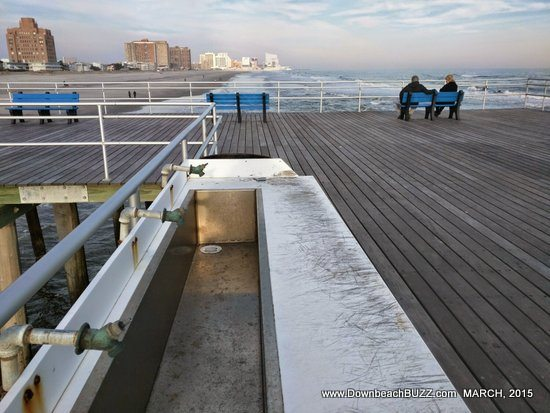 Nj salt fish nj fishing piers for Atlantic city fishing pier