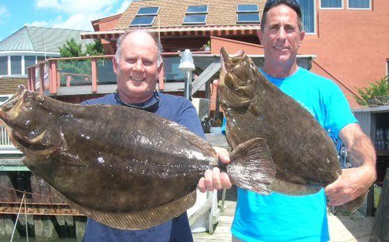 Summer Flounder Fishing Margate Fluke Party Boat Half Day